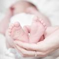 """""""Baby Louis woog 509 gram"""", verloskundige Karlijn vertelt"""