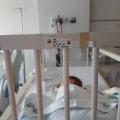 Mijn zoon heeft tracheamalacie…