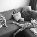 Van feestbeest naar huismus: wat ouderschap met je doet…