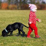 'Wij hebben een hond, dat is bijna hetzelfde als een kind.'