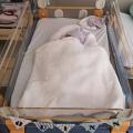 Quinn werd dysmatuur (veel kleiner) geboren, hij woog ruim 1800 gram